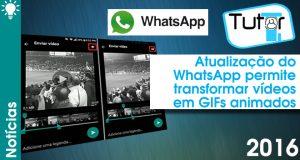 atualização do whatsapp permite transformar vídeos em gifs animados